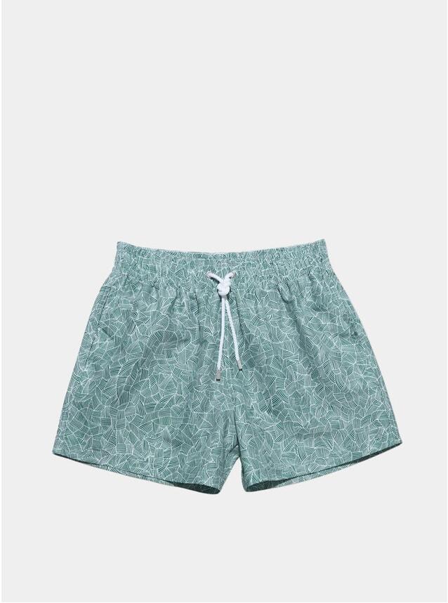 Green Reflects Swim Shorts