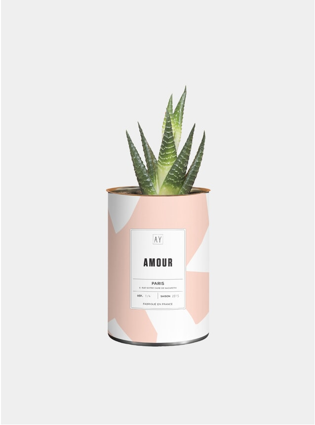 Amour Greasy Plant Pot