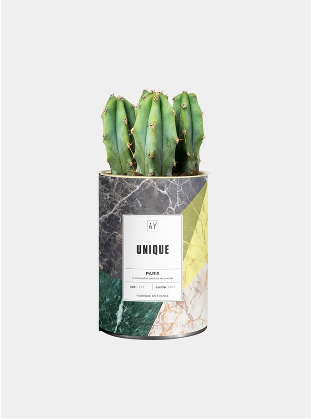 Unique Marble Cactus Plant Pot
