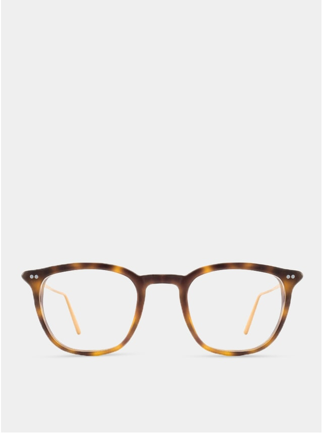 Tortoise OneThree B Glasses