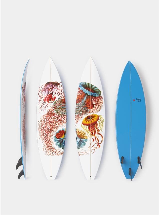Disco Meduse Diptych Surfboard