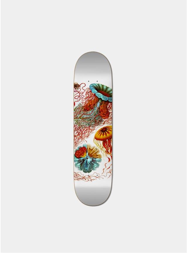 Disco Meduse Skateboard