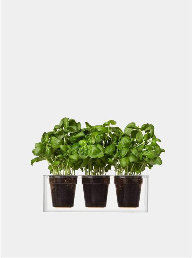 Triple Transparent Cube Plant Pot
