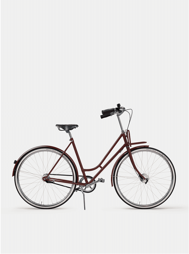 Rusty Red Lady Cruiser Bicycle