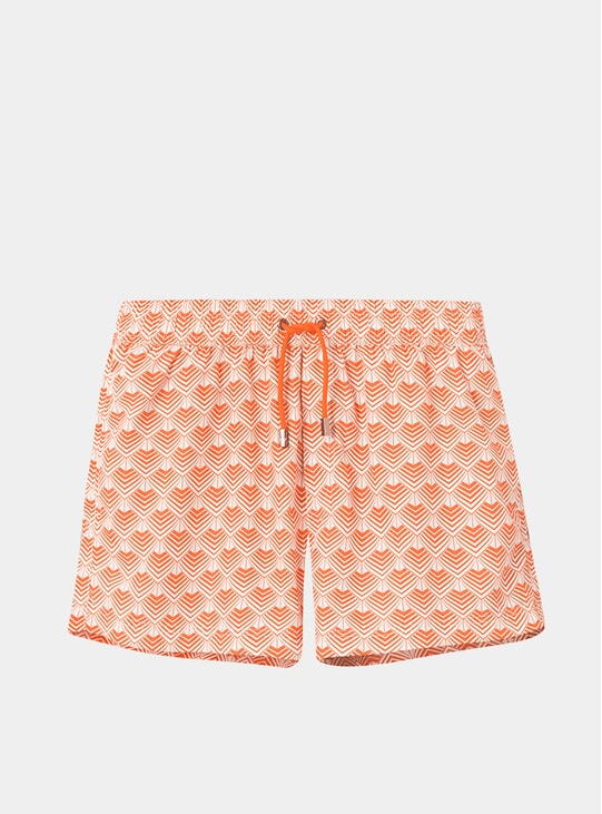 Mr Ripley Swim Shorts