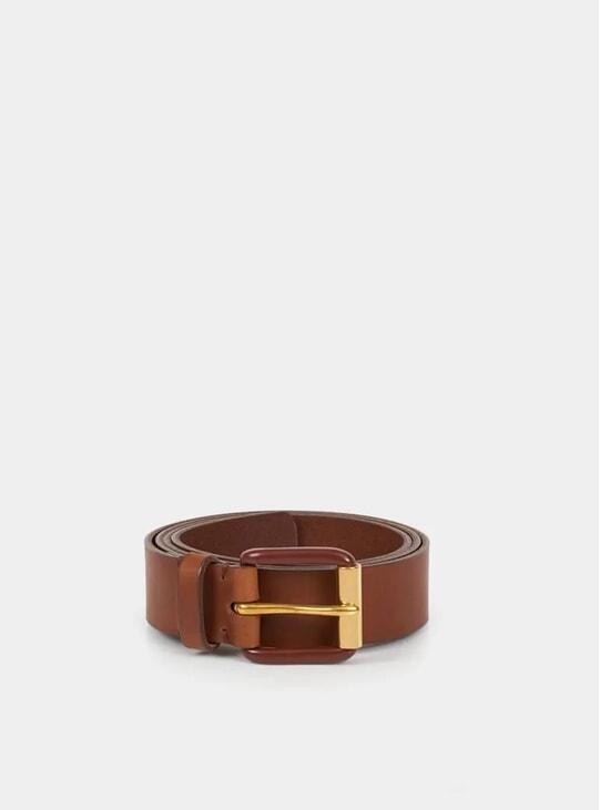 Saddle Brown / Brass Modernist Exposed Belt