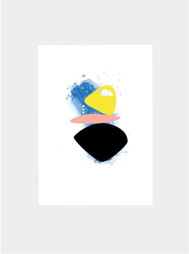 Flight II Print