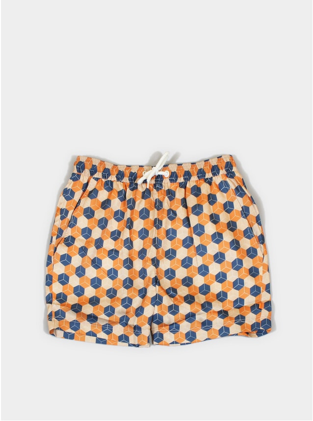 Cubist Printed Swim Shorts