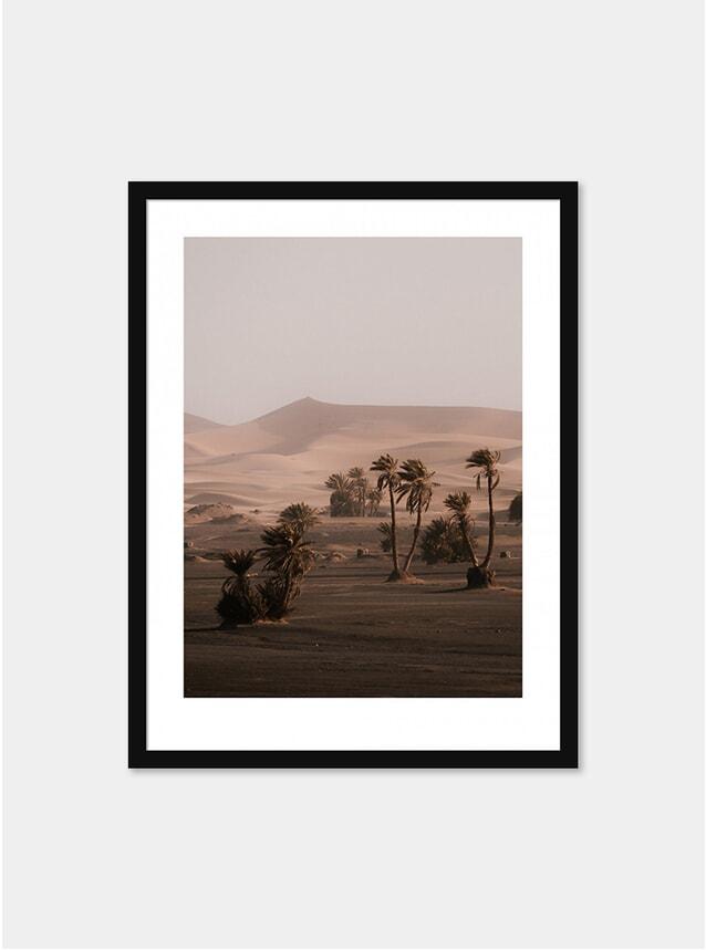 Sahara Photograph