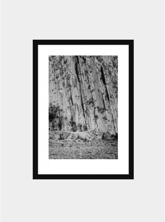 Untitled Print