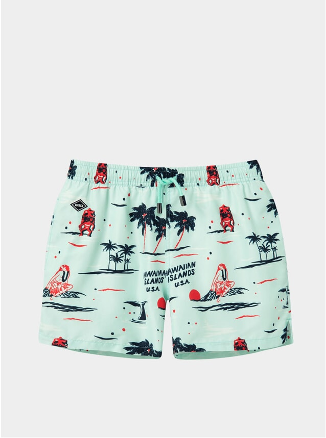 Big Kahuna Swim Shorts