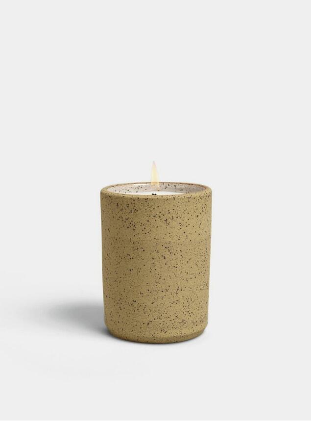 Joshua Tree 12 oz. Ceramic Candle