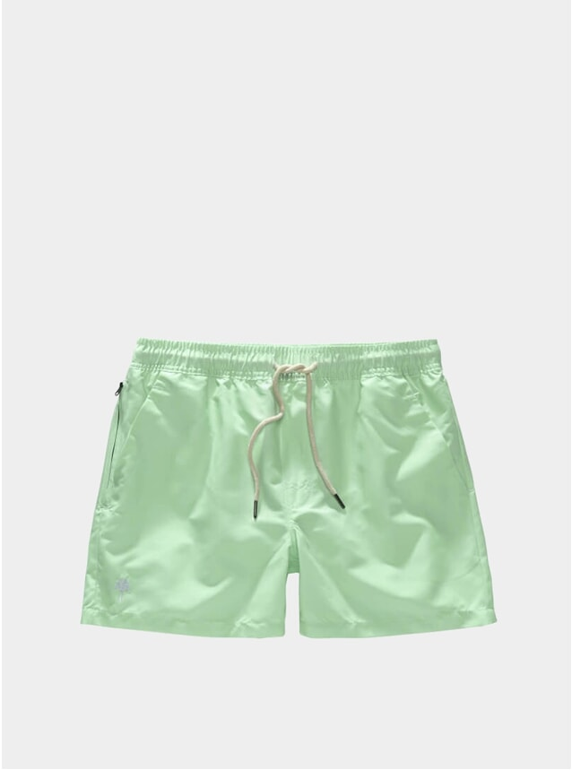 Solid Mint Swim Shorts