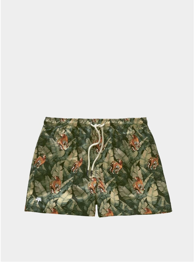 Roar Swim Shorts