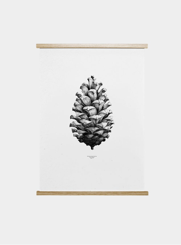 Black / White 1:1 Pine Cone by Form Us With Love