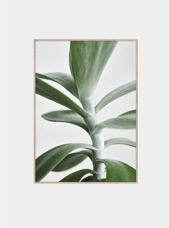 Green Home 04 Print by Kantinkoski