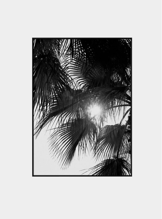 Palm Trees Print by Norm Architects