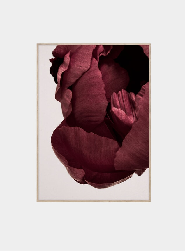 Peonia 02 Print by Norm Architects