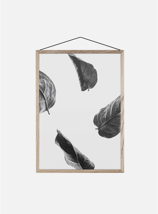 Floating Leaves 02 Print by Norm Architects