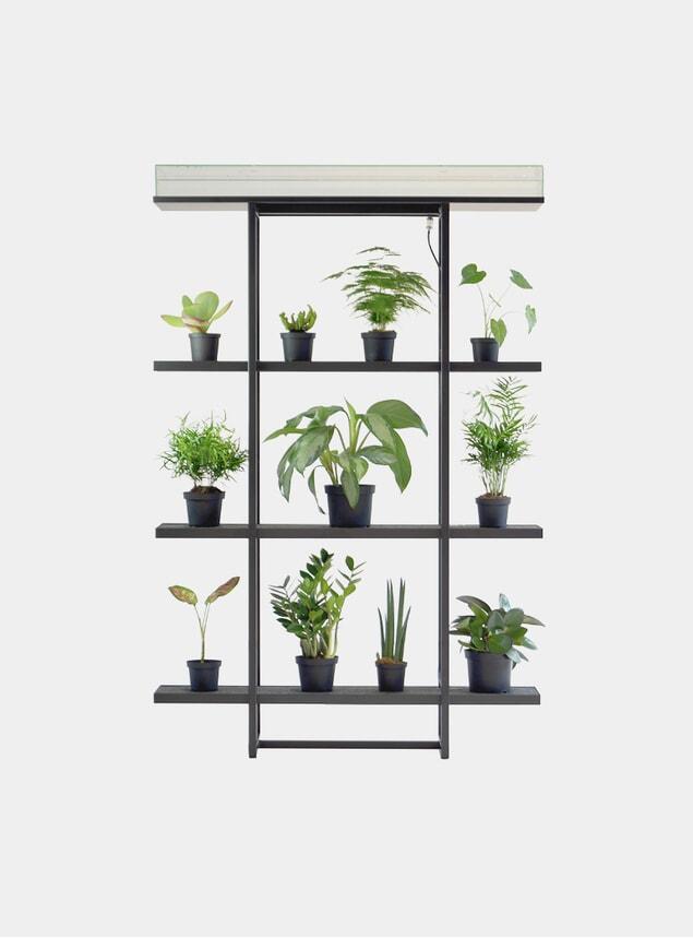 One Vertical Garden