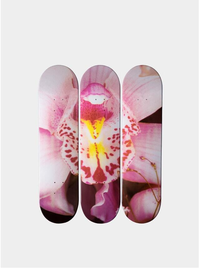 Araki's Orchid