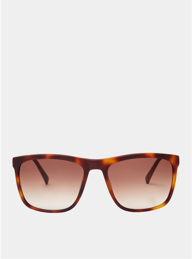 Matt Tortoise Greg Sunglasses