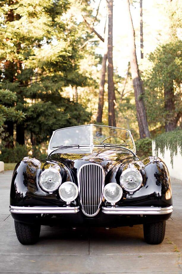 Jaguar-Blog-Post-Content1