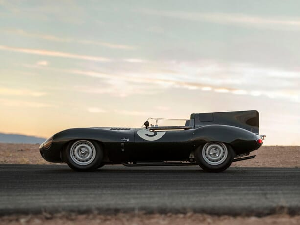 Jaguar-dtype-long-nose-4