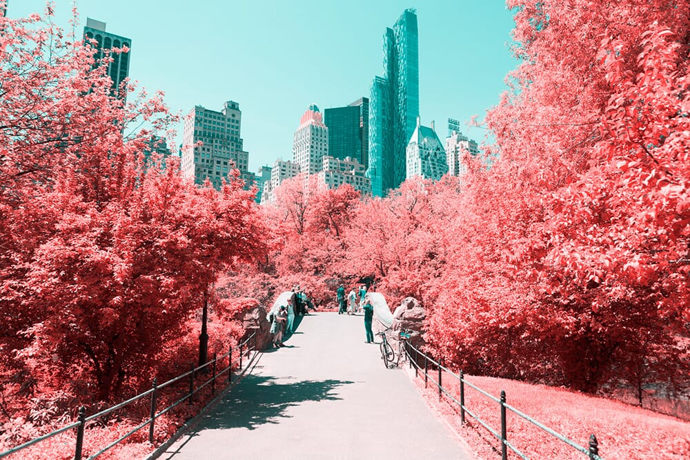 Paolo-Pettigiani-infrared-central-park-2