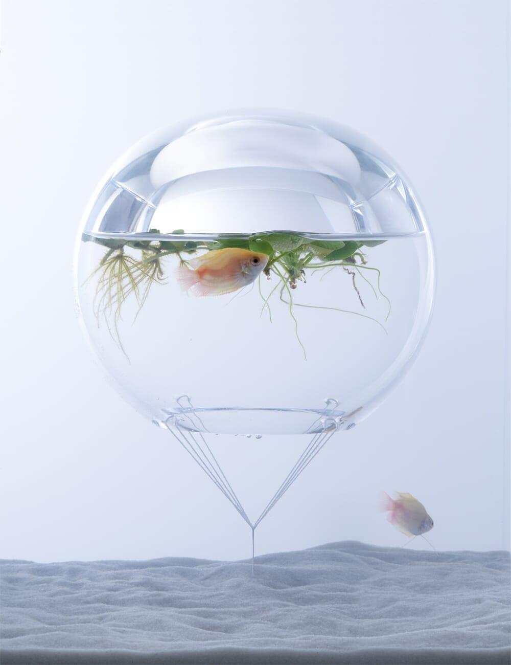 waterscape aquariums by huraka misawa