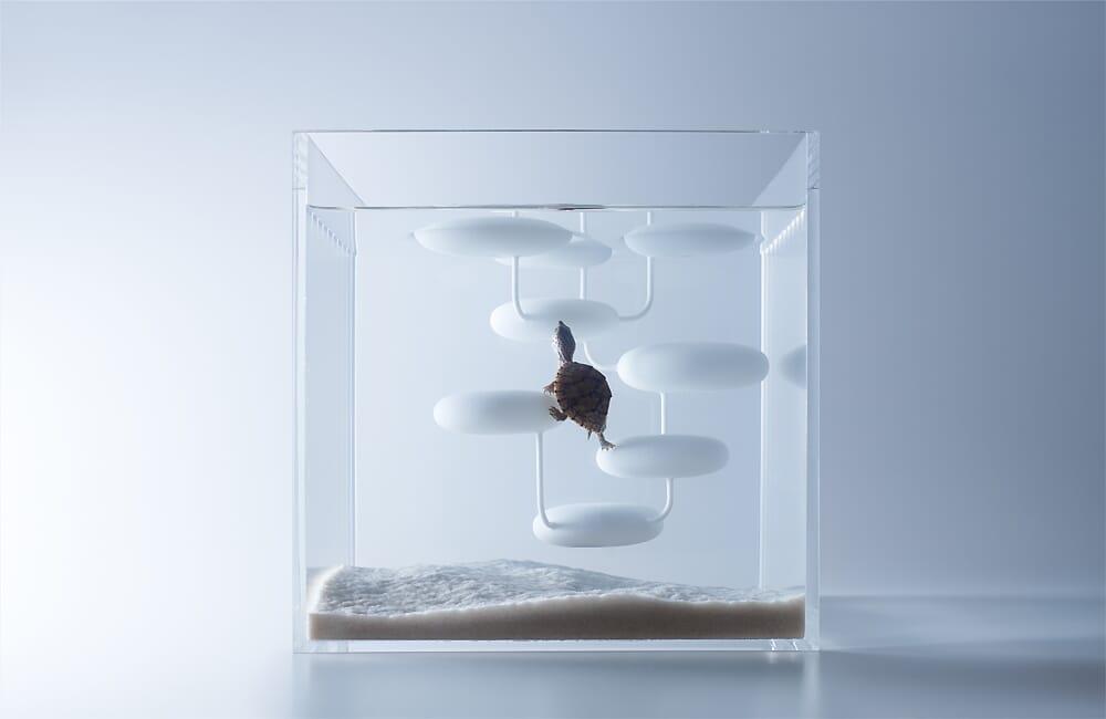 waterscape aquariums by huraka misawa5