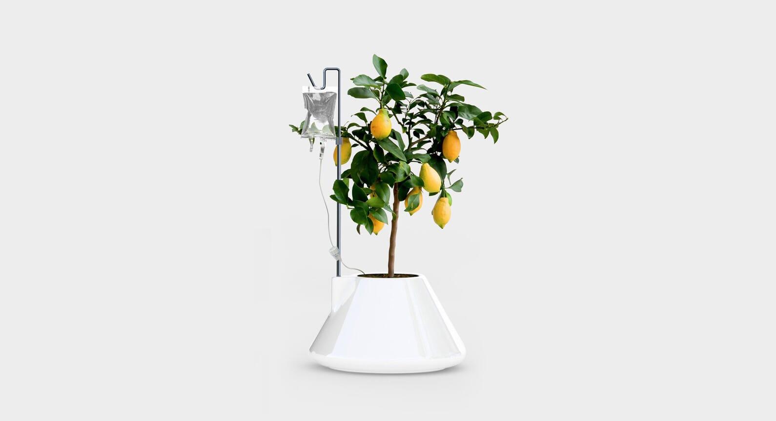 Vitamin Launches A New Range Of Furniture, Lighting & Homeware