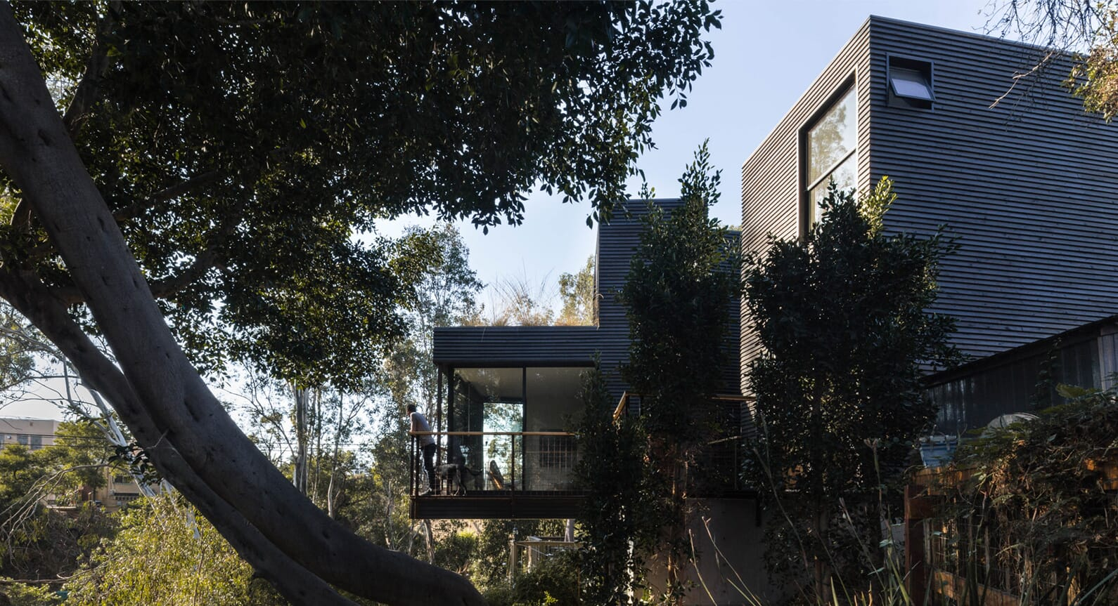 California Dreaming: The Remarkable Canyon House In San Diego