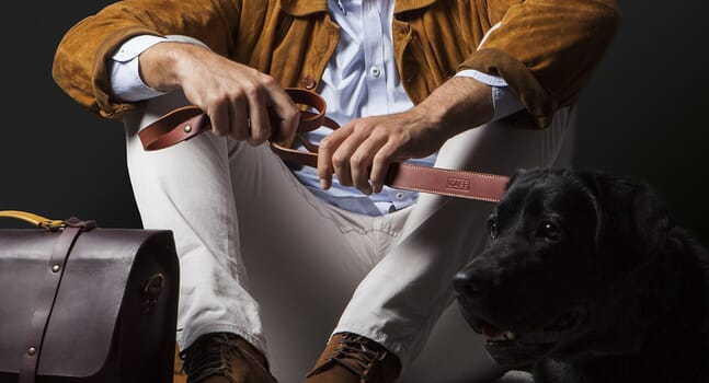 Luxury dog accessories for an on-point pooch